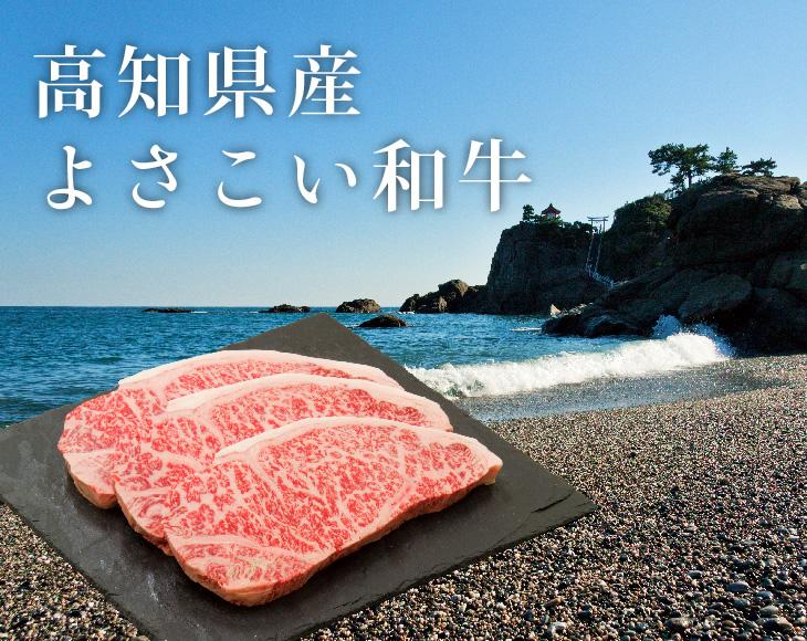 高知県産 よさこい和牛